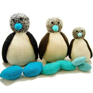 Bob the Blue-Footed Booby PDF