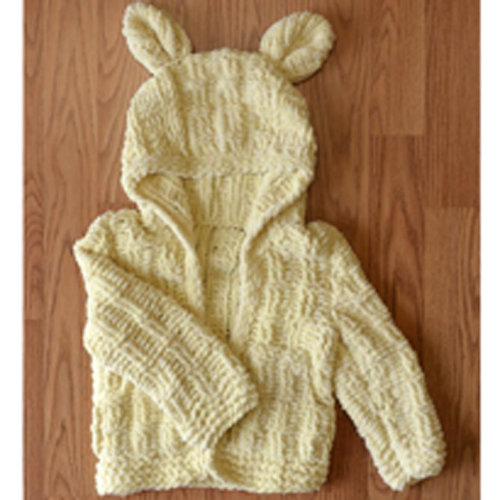 View larger image of Little Cub Hoodie (Free)